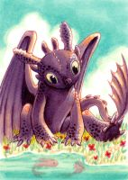 Toothless Wants Fish... by CassieFrese