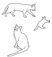 Cat Lineart Set 3 by CrystalKoopa42