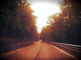 Road to autumn by MonicaYar