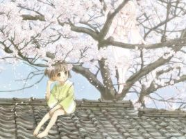 Cherry blossoms on the roof by sirauo