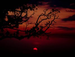 Red sunset by Petercruz