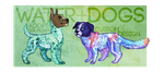 [[adoptables]] | [CLOSED] | water+dogs by SevenSpirals