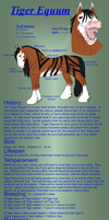 Tiger Equum breed sheet by ShapeShifter314