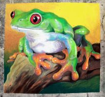 Red-Eyed Tree Frog Chalk Art by charfade