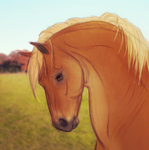 Suffolk Punch by vyxe