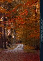 Autumn 01 by kuschelirmel-stock