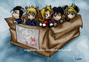 FMA - Puppies of the military by sapphireluna