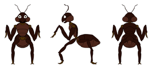 Ant Concept by MrNoobtastic