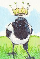 Magpie Majesty ACEO by AshleighPopplewell