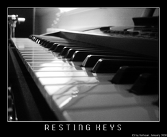 Resting Keys - Black+White by Darkaan