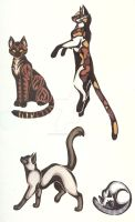 Color Cat Tattoos by CaptainMorwen