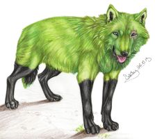 Green wolves do exist! by SaidyWolf
