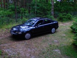 My Car - Audi A4 by 19Skejciara10