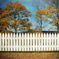 Fence by dajono