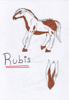 Rubis ref by Ginger-love