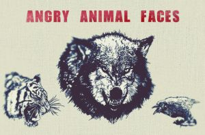 Angry Animal Face Vectors by wegraphics