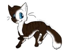 Cat Adoptable: CLOSED by xXCatNapperXx