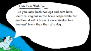 Cat Facts With Eira ll 4 by AriaSnow