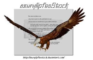 3D object - eagle2 by AzurylipfesStock