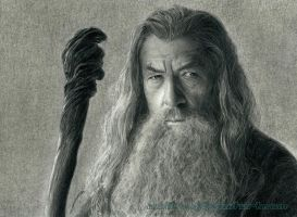 Gandalf the Grey by AmBr0