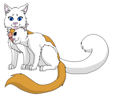 Couple number four: Cloudtail and Brightheart by miudream