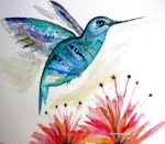 Hummingbird 1 by GeaAusten