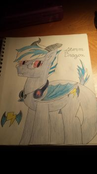 Storm Dragon: Grand Changes by StormDragon98