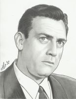 perry mason by lryvan