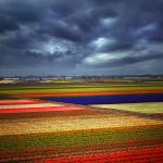 a day in the spring... by VaggelisFragiadakis