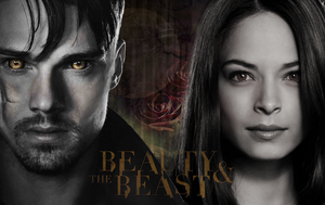 Beauty and The Beast - WP 2 by Vampiric-Time-Lord