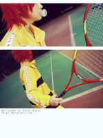 The Prince of Tennis by MOLISAMA