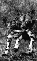 Playing dogs by evil-goma