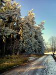 weather: cold but sunny by Mittelfranke