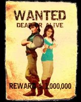 Kingdom's Most Wanted Thieves by Pahua