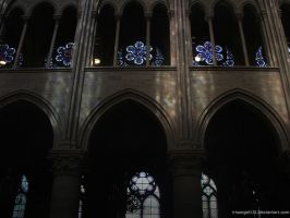 Notre Dame - Relfections by IrisAngel131