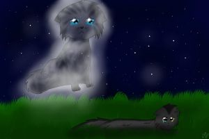 Silverstream and Graystripe~I'm Watching Over You by Squigmunks