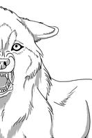 Snarling Wolf Lineart by ShadowKissedAngel