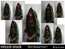 Bird Shaman Pack 1 by mizzd-stock