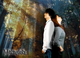 Marauders - James and Lily by googlz