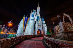The Path to Cinderella's Castle by shaderf