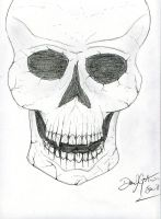 random skull by Dan J. Gutwein by danjgutweincreations