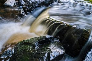 Flow of life by JBTphoto