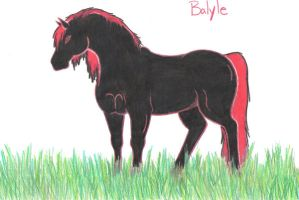Horse Character - Balyle by EmeraldTheWolf