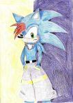 Roxcho the Hedgehog - Roxcho by DarkGuardian17