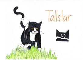 Tallstar - Windclan by EnochianArtist