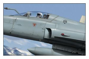 F-5E Tiger III Close Up by Hikaru84