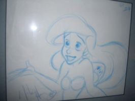 On the walls_Mark Henn Ariel by tombancroft