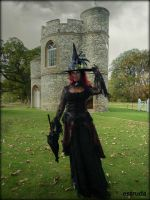 The Witch And The Castle by Estruda