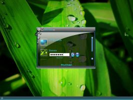 Vista TW Edition LogonXP by DigitalPhenom