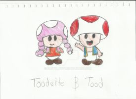Toad and Toadette by fastslow77